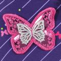 Shiny Butterfly